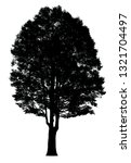 silhouette tree isolated on a... | Shutterstock . vector #1321704497