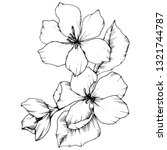 apple blossom floral botanical...   Shutterstock . vector #1321744787