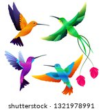 hummingbirds collection. exotic ... | Shutterstock .eps vector #1321978991