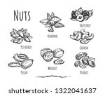 vector illustration of healthy  ... | Shutterstock .eps vector #1322041637