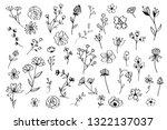 Various Flowers Doodle...
