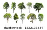 collection of isolated trees on ...   Shutterstock . vector #1322138654