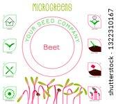 microgreens beet. seed... | Shutterstock .eps vector #1322310167