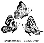 Stock vector set of beautiful black and white butterfly isolated on white many similarities to the author s 132239984