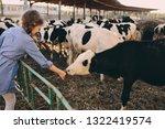 Kid Girl Feeding Calf On Cow...