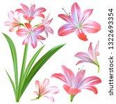 realistic pink flowers  ... | Shutterstock .eps vector #1322693354
