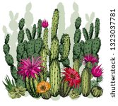 green succulents and cactus... | Shutterstock .eps vector #1323037781