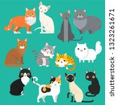 funny cartoon cats characters... | Shutterstock .eps vector #1323261671
