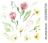 watercolor hand drawing floral... | Shutterstock . vector #1323400724
