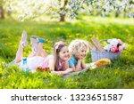 family picnic in spring park...   Shutterstock . vector #1323651587