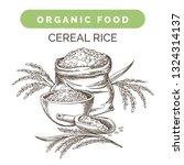 rice harvest sketch. wild rice...   Shutterstock .eps vector #1324314137