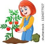 cartoon girl harvesting tomatoes | Shutterstock .eps vector #1324377527