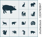 fauna icons set with elephant ... | Shutterstock . vector #1324783847