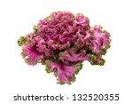 Fresh Organic Pink Flowering...