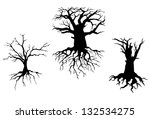Trees With Dead Branches And...