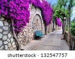 Vibrant Flower Draped Pathway...