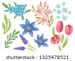 set of spring flowers.... | Shutterstock .eps vector #1325478521