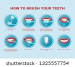 how to brush your teeth step by ... | Shutterstock .eps vector #1325557754