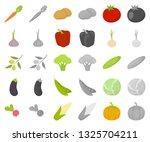 different kinds of vegetables... | Shutterstock .eps vector #1325704211