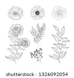 set roses and flowers plants... | Shutterstock .eps vector #1326092054