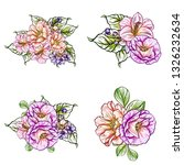 flowers set. collection of... | Shutterstock . vector #1326232634