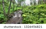 north forest stream after rain... | Shutterstock . vector #1326456821