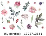 watercolour floral illustration ... | Shutterstock . vector #1326713861