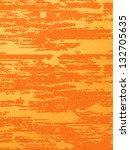 the texture of an orange   Shutterstock . vector #132705635