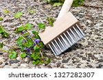 weeds cleaning with weed brush  | Shutterstock . vector #1327282307