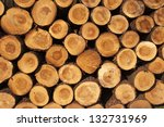 A Pile Of Cut Tree Trunks...