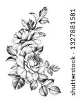 hand drawn rose bunch with two... | Shutterstock . vector #1327881581