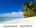 caribbean beach and palm tree  .... | Shutterstock . vector #132793979