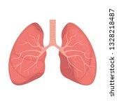 lungs   human internal organ....   Shutterstock .eps vector #1328218487