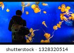 Aquarium Tank Tourist Man...