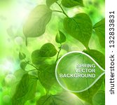 green spring trees background.... | Shutterstock .eps vector #132833831