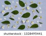 romantic floral backgorund | Shutterstock . vector #1328495441