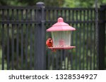 red male northern cardinal... | Shutterstock . vector #1328534927