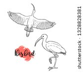 hand drawn ibis. linear style.... | Shutterstock .eps vector #1328828381