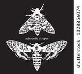 deaths head hawk moths hand... | Shutterstock .eps vector #1328856074