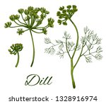 dill hand drawn colorful set.... | Shutterstock .eps vector #1328916974