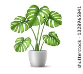 monstera in a flower pot... | Shutterstock .eps vector #1328965841