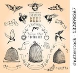 Hand Drawn Vintage Birds  Bees...