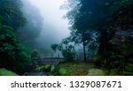 dramatic looking jungle with... | Shutterstock . vector #1329087671