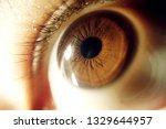 sick eye background   red eyes...   Shutterstock . vector #1329644957