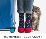 Stylish Suitcase  Women's Legs...