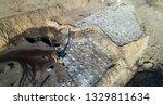 coal mining in open pit | Shutterstock . vector #1329811634