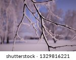 morning frost painted birch... | Shutterstock . vector #1329816221