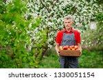 farmer with freshly harvested... | Shutterstock . vector #1330051154