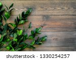 spring branches with small... | Shutterstock . vector #1330254257