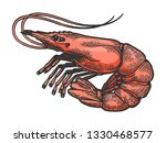 shrimp sea caridea animal... | Shutterstock .eps vector #1330468577